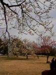 image/fussaa-2006-03-13T16:23:45-1.jpg